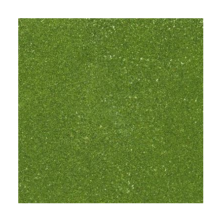 Poudre embossing10g olive