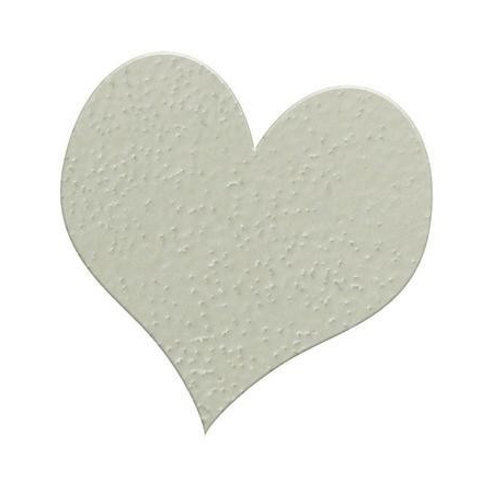 Poudre embossing10g champagne