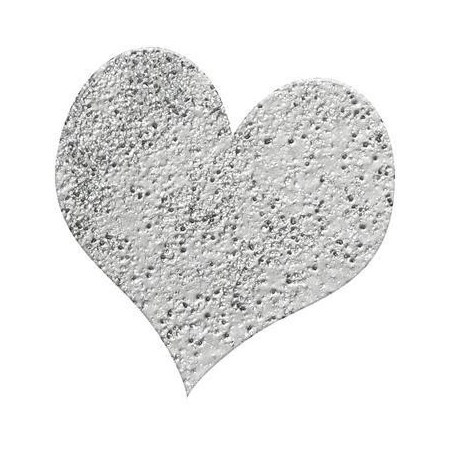 Poudre embossing10g argent brillant