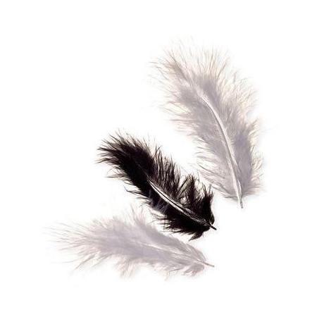 Plumes de marabout noir 9cm 15 pces