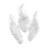 Plumes de coq, blanc 10cm 16 pces