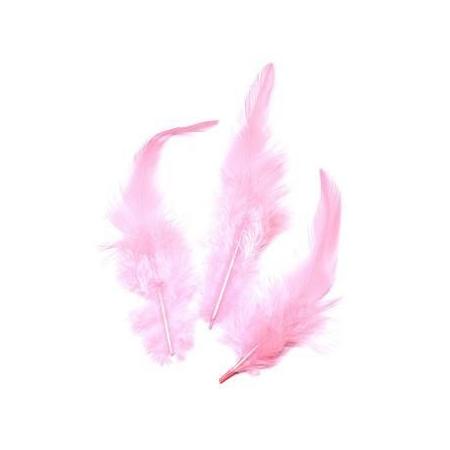 Plumes de coq, rose 10cm 16 pces