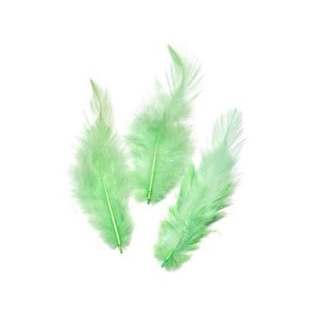 Plumes de coq,vert printemps 10cm 16 pces