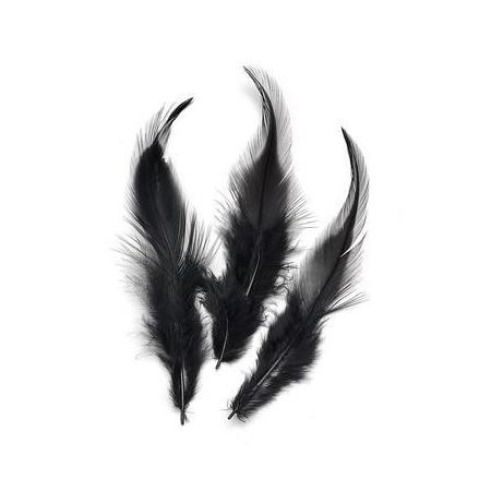 Plumes de coq, noir 10cm 16 pces