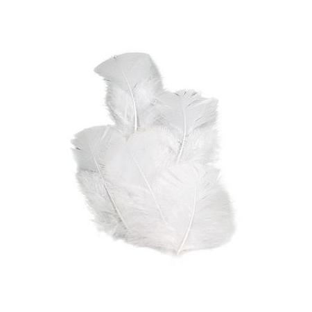 Plumes de dinde blanc 7 cm 16 pces