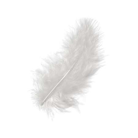 Plumes de marabout blanc 9cm 15 pces