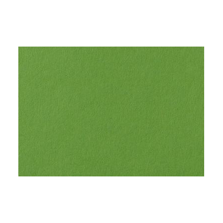 Carton Photo 50x70 vert herbe 300Grs