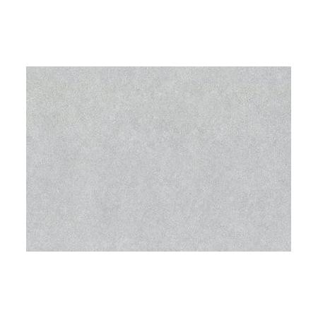 Papier soie/fleur50x70cm arg