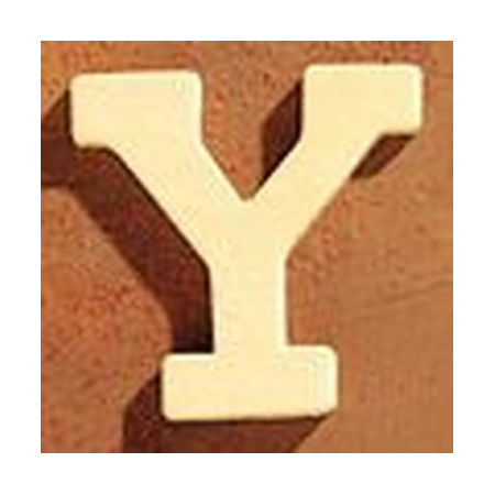 FSC Lettre en bois 'Y' 4cm