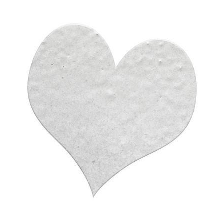 Poudre embossing10g argent