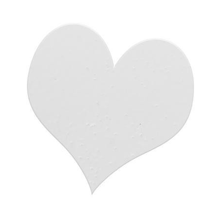 Poudre embossing10g blanc