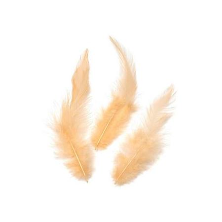 Plumes de coq, abricot 10cm 16 pces