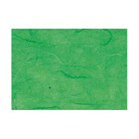 Papier paille vert 50x70cm
