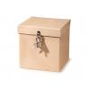 Boîte à bijoux/cadenas12,5