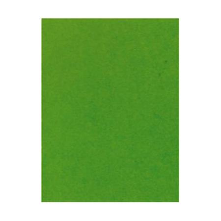 Parchemin Pergamano A4 vert mousse 5 feuilles