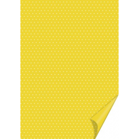 Carton à points 21x31 200g bouton d'or